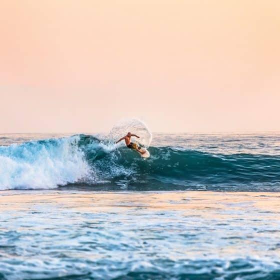 surfing doctors